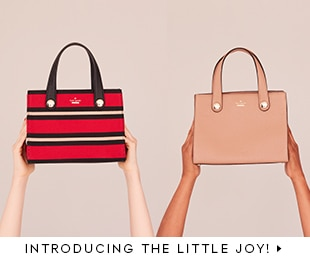 introducing the little joy.